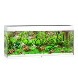 Juwel Rio 240 LED - akwarium