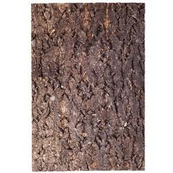 Repti-Zoo Big Tree Background - tło z kory do terrarium 20x30cm