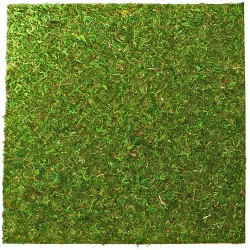 Repti-Zoo Natural Moss Back&Bottom - tło i podłoże z mchu 45x45cm