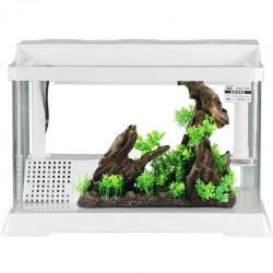SunSun HGG-300 - Akwa-Terrarium dla żółwia 13l