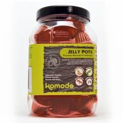 Komodo Jelly Pot Brown Sugar- brązowy cukier w żelu 60szt.