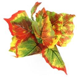 Bello Plant - Mystical Seed - roślina M do obrazów 3D