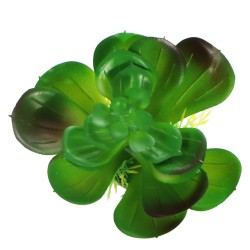 Bello Plant - Pearl Flat Plant - roślina S do obrazów 3D