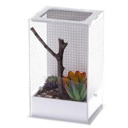 Repti-Zoo Mantis Box L - terrarium akrylowe dla modliszek