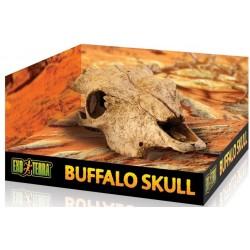 EXO TERRA Buffalo Skull (czaszka bawoła)
