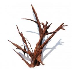 Malaysian Driftwood Giant XXXL - korzeń 150cm no.M34