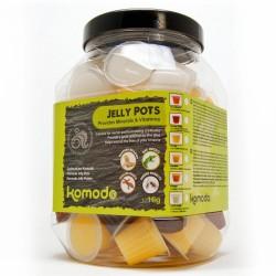 Komodo Jelly Pot Fruit Mix Jar - miks owocowy w żelu 60szt.