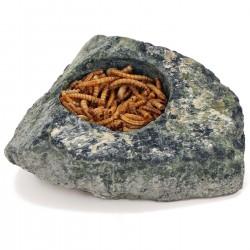 Terrario Hard Rock Dish L - miska w naturalnej skale